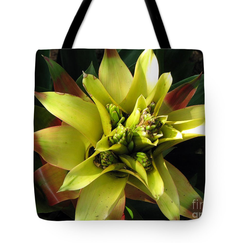 Tropical Tote Bag featuring the photograph Tropical by Amanda Barcon