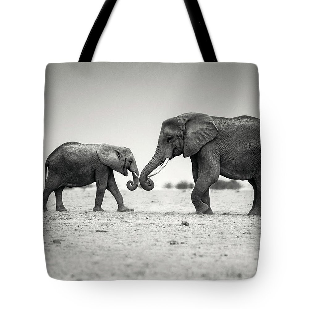 Elephant Tote Bag featuring the photograph Trunk Pumping Elephants by Vicki Jauron
