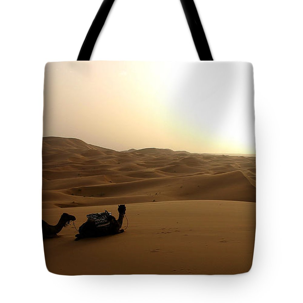 Camel Tote Bag featuring the photograph Two Camels At Sunset In The Desert by Ralph A Ledergerber-Photography