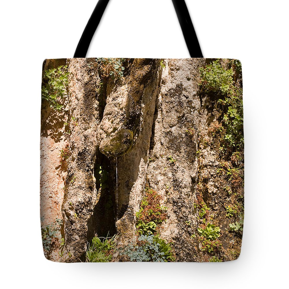 Nature Tote Bag featuring the photograph Weeping Rock In Zion National Park by Louise Heusinkveld