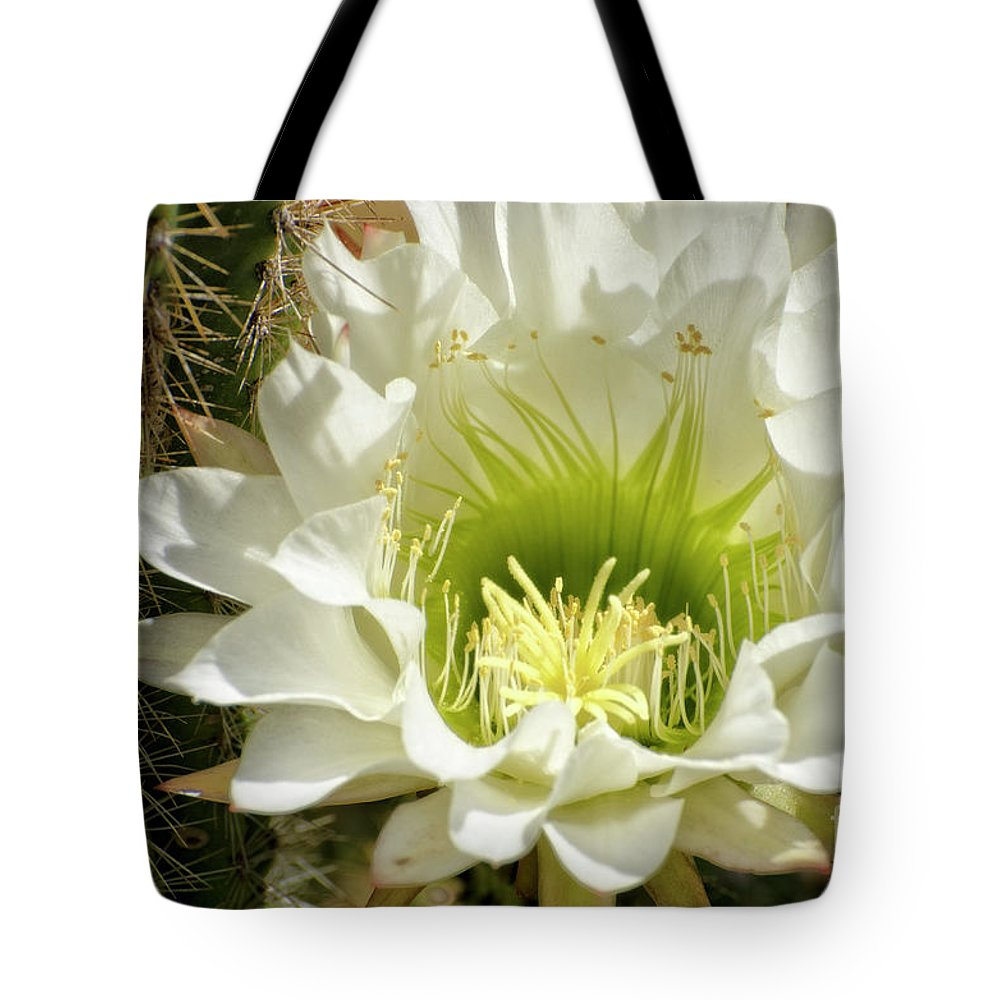 Cactus Tote Bag featuring the photograph White Cactus Flower by Jim And Emily Bush