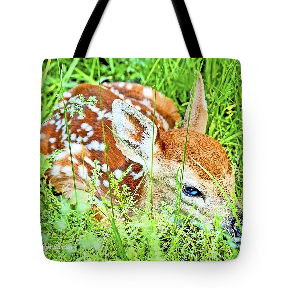 Herbivore Tote Bag featuring the photograph White-tailed. Virginia Deer Fawn by A Gurmankin