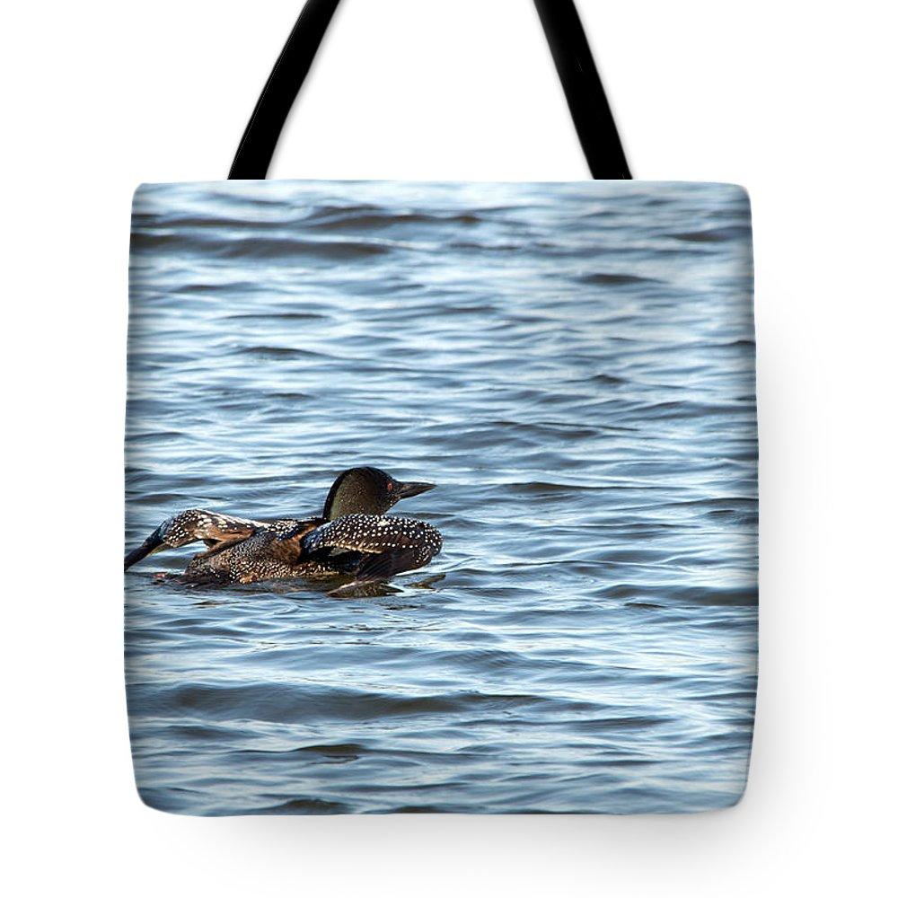 Seney National Wildlife Refuge Tote Bag featuring the photograph Wings Up by Linda Kerkau