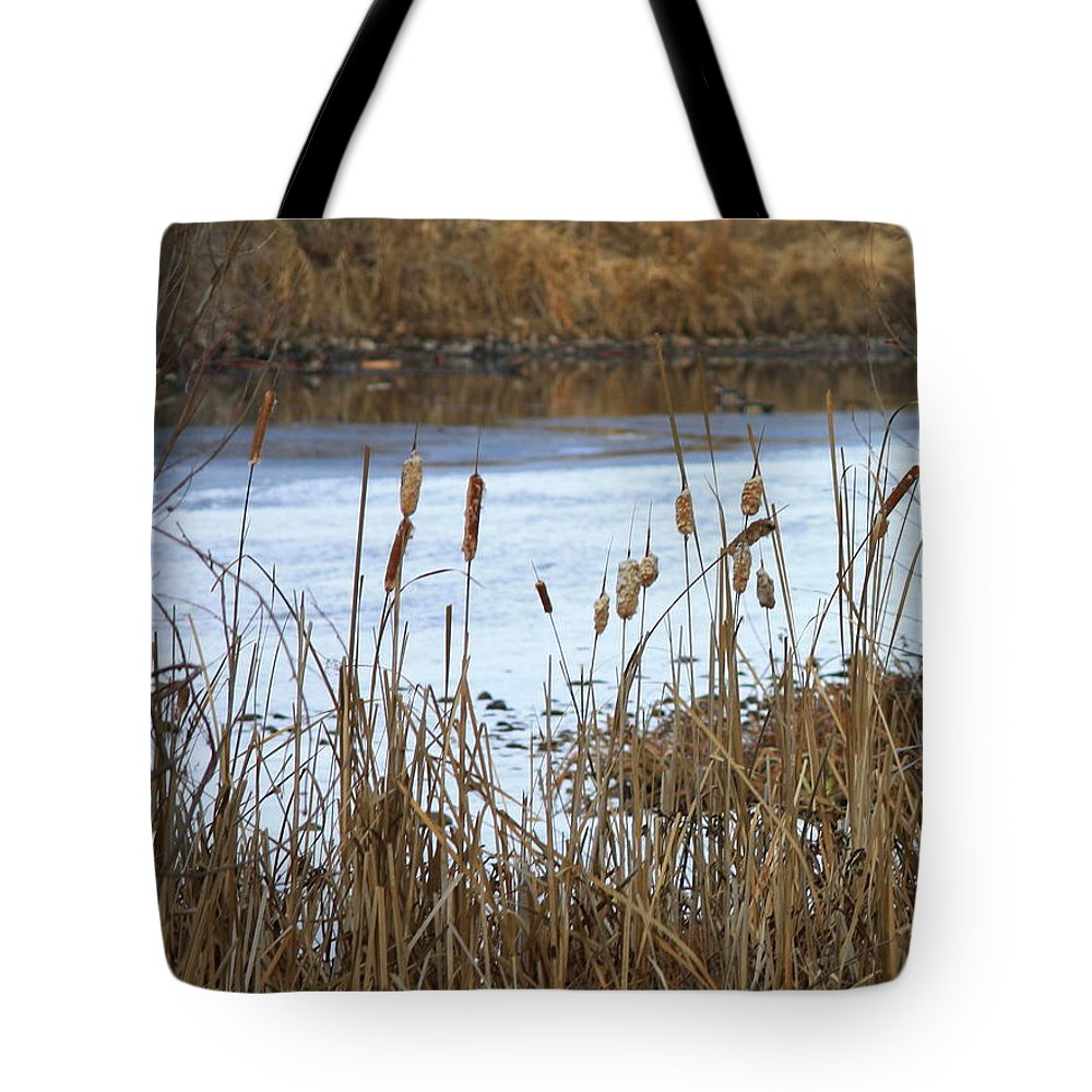 Cattails Tote Bag featuring the photograph Winter Cattails by Carol Groenen