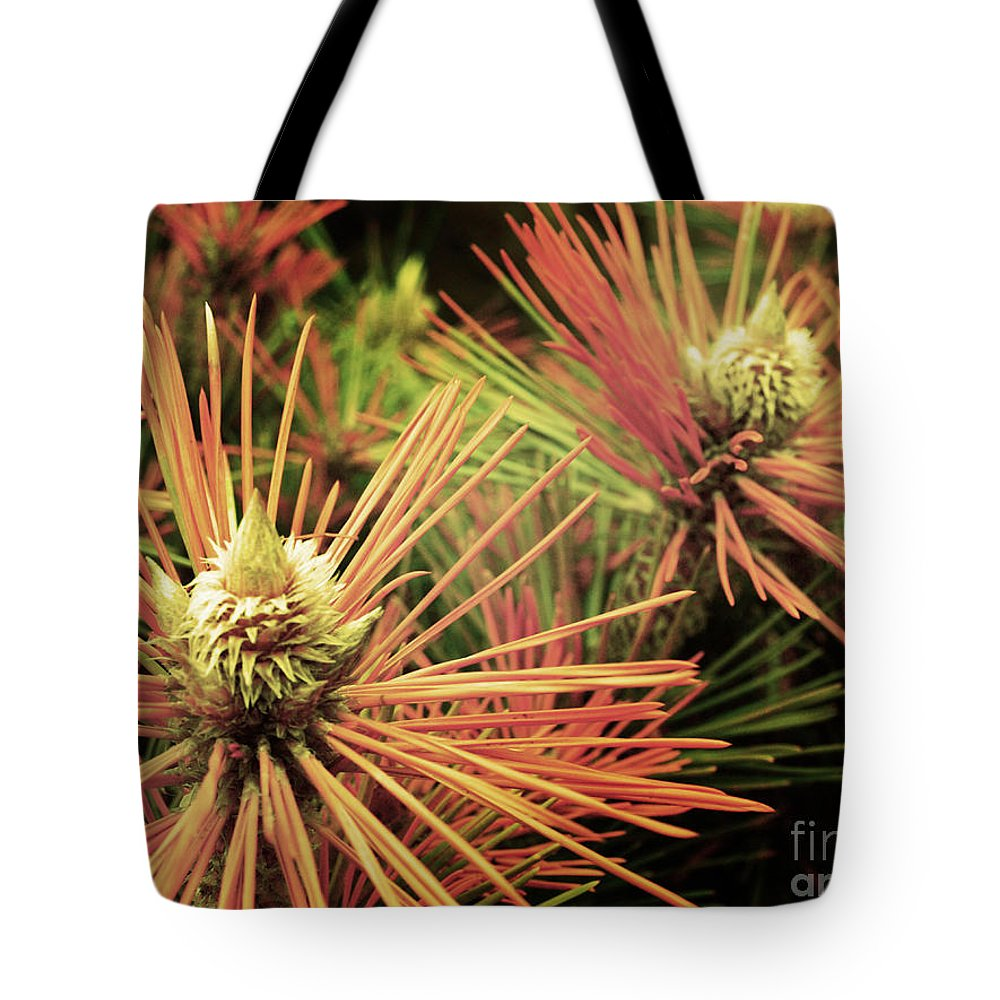 Winter Tote Bag featuring the photograph Winter Details by Tara Turner