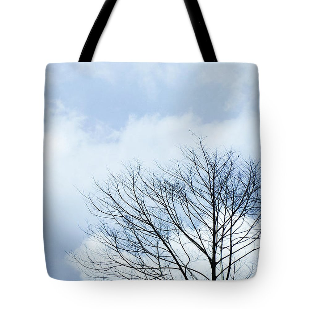 Winter Fall White Sky Tote Bag featuring the photograph Winter Tree by Adelista J