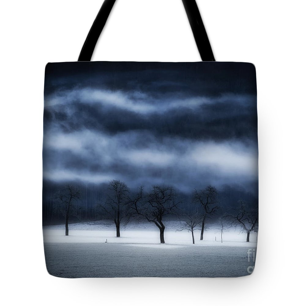 Austria Tote Bag featuring the photograph Winter's Passion by Konstantinos Lagos