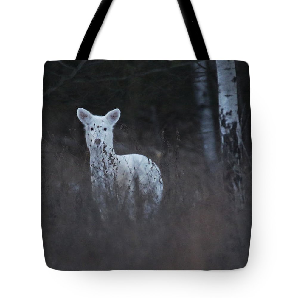 Tote Bag featuring the photograph Wintery White by Brook Burling