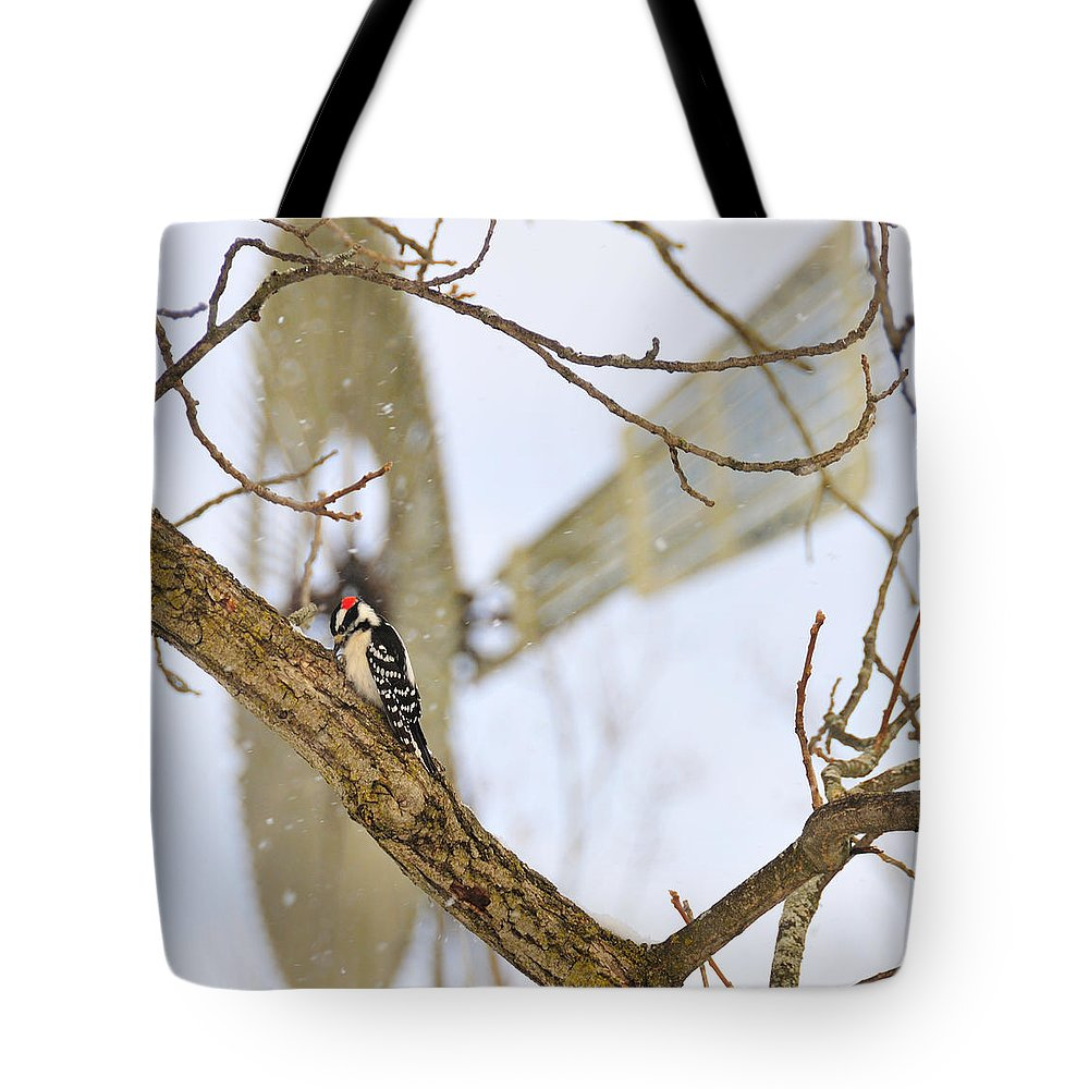 Windmill Tote Bag featuring the photograph Woodpecker And Windmill by David Arment