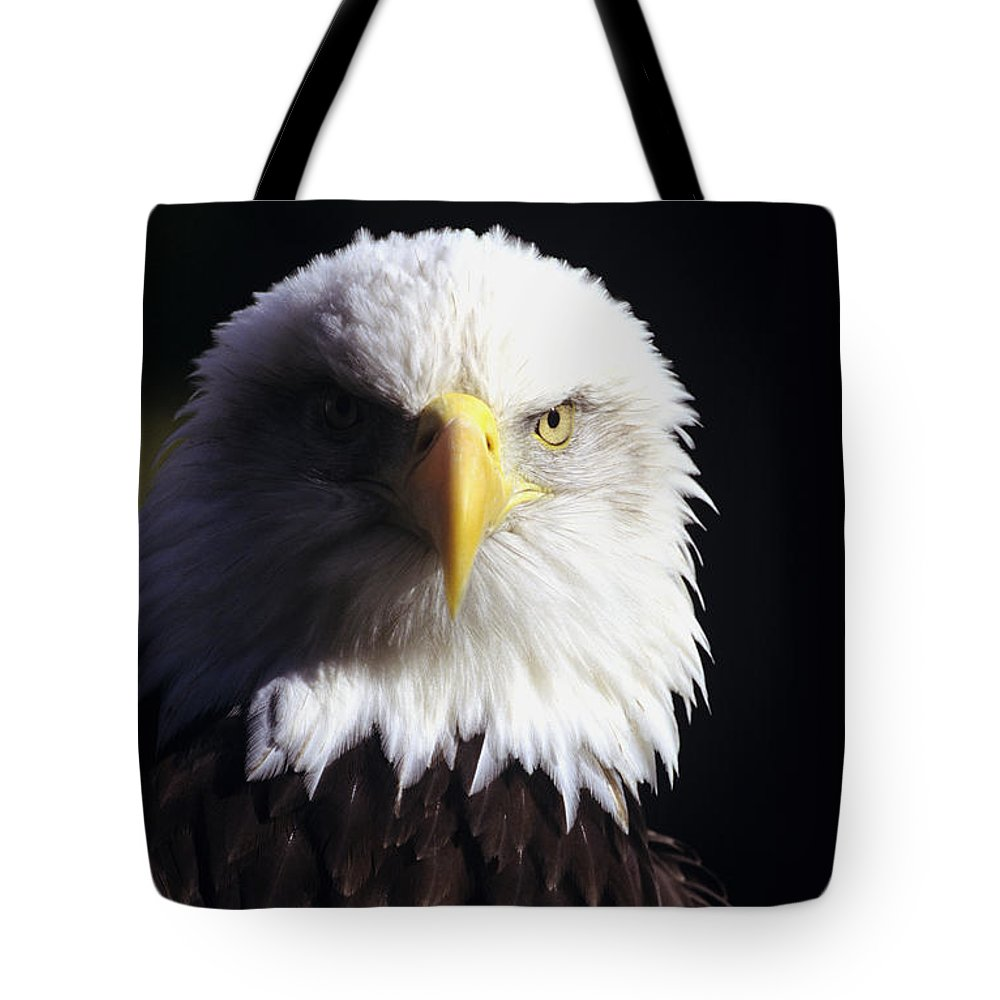 American Tote Bag featuring the photograph Bald Eagle by John Hyde - Printscapes