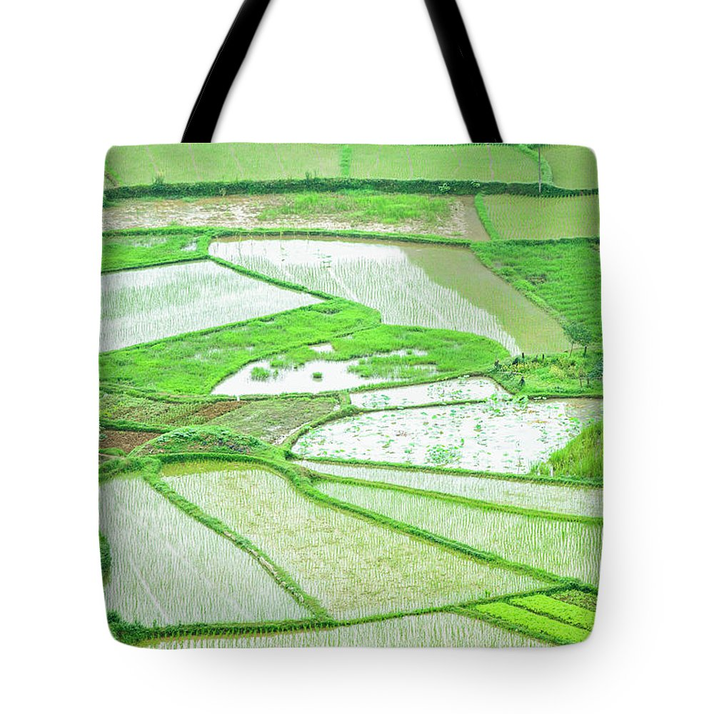Rice Fields Tote Bag featuring the photograph Rice Fields Scenery by Carl Ning