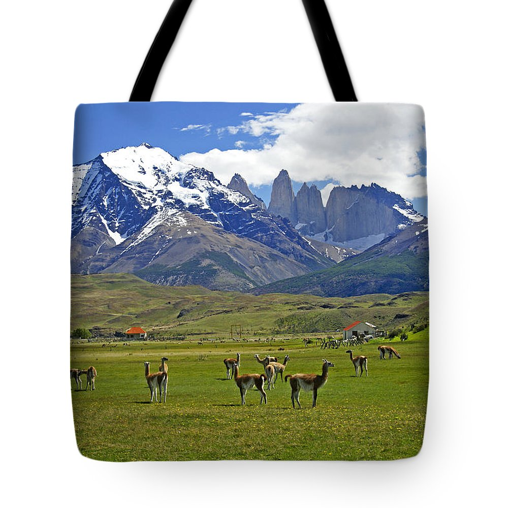 Patagonia Tote Bag featuring the photograph Springtime In Torres Del Paine by Michele Burgess
