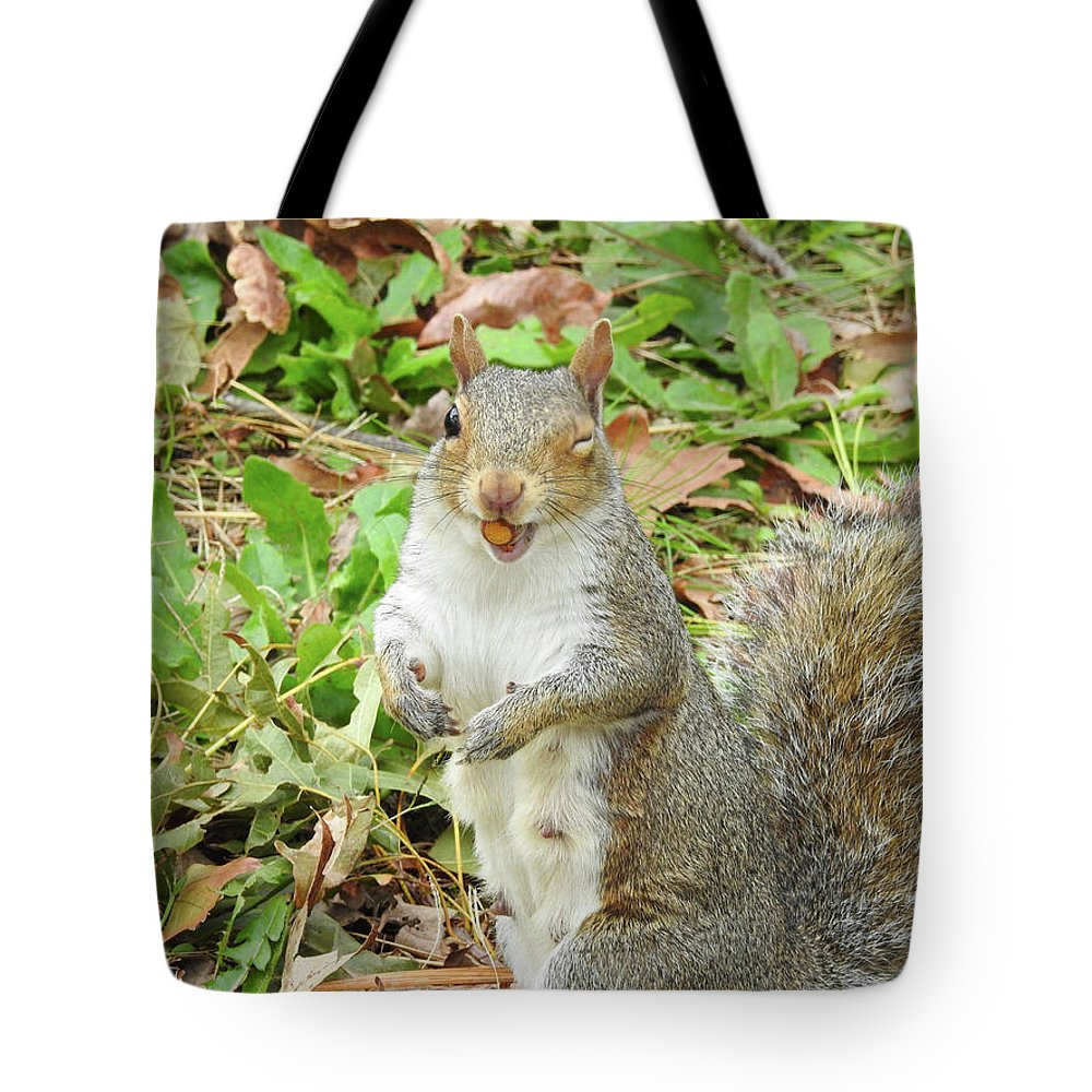 Don't Drop The Crystal Ball Tote Bag featuring the photograph 11-2-17--3626 The Appreciative Squarel, Don't Drop The Crystal Ball by Vicki Hall