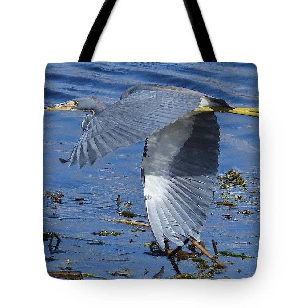 Heron Tote Bag featuring the photograph Tricolored Heron by David Campione