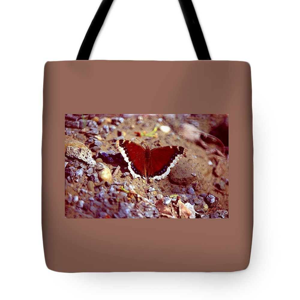 Butterfly Tote Bag featuring the photograph 113093-1 by Mike Davis