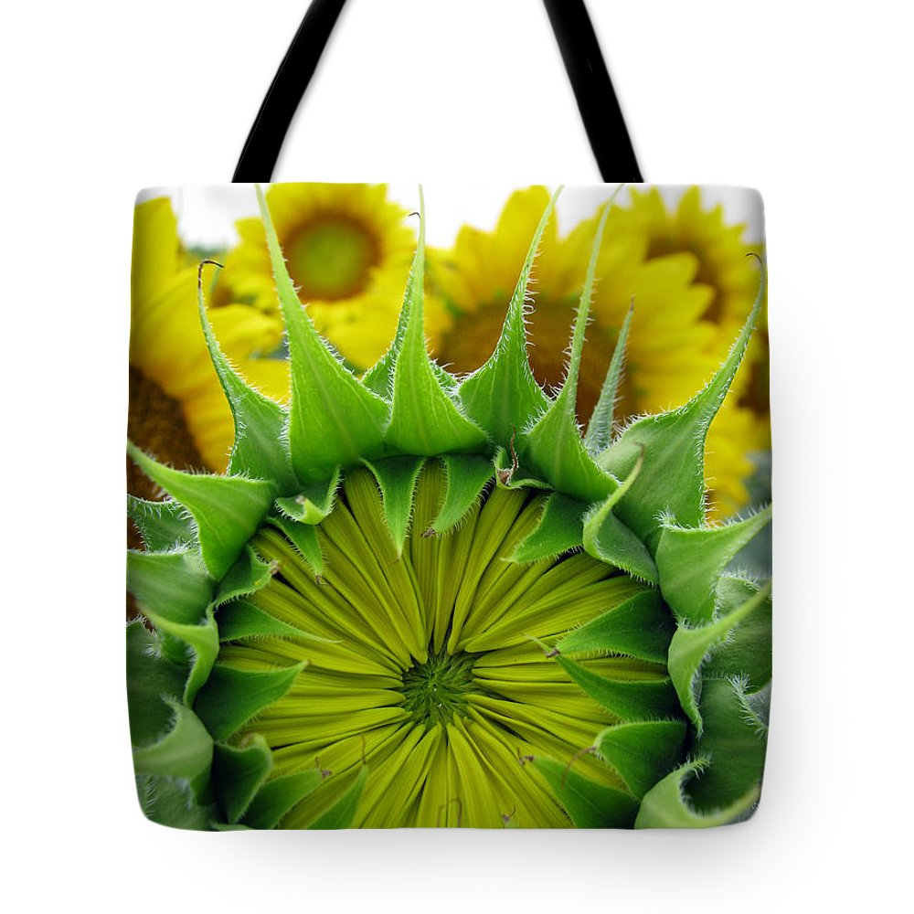 Sunflwoers Tote Bag featuring the photograph Sunflower Series by Amanda Barcon