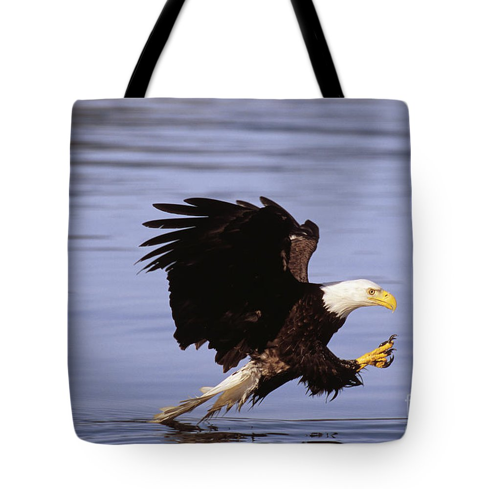 Afternoon Tote Bag featuring the photograph Bald Eagle by John Hyde - Printscapes