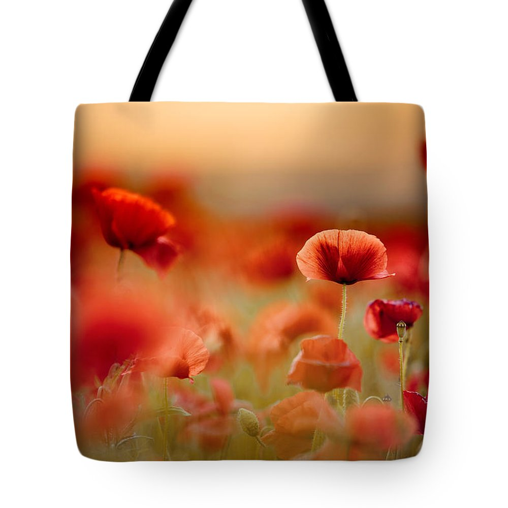 Poppy Tote Bag featuring the photograph Poppy Dream 14 by Nailia Schwarz