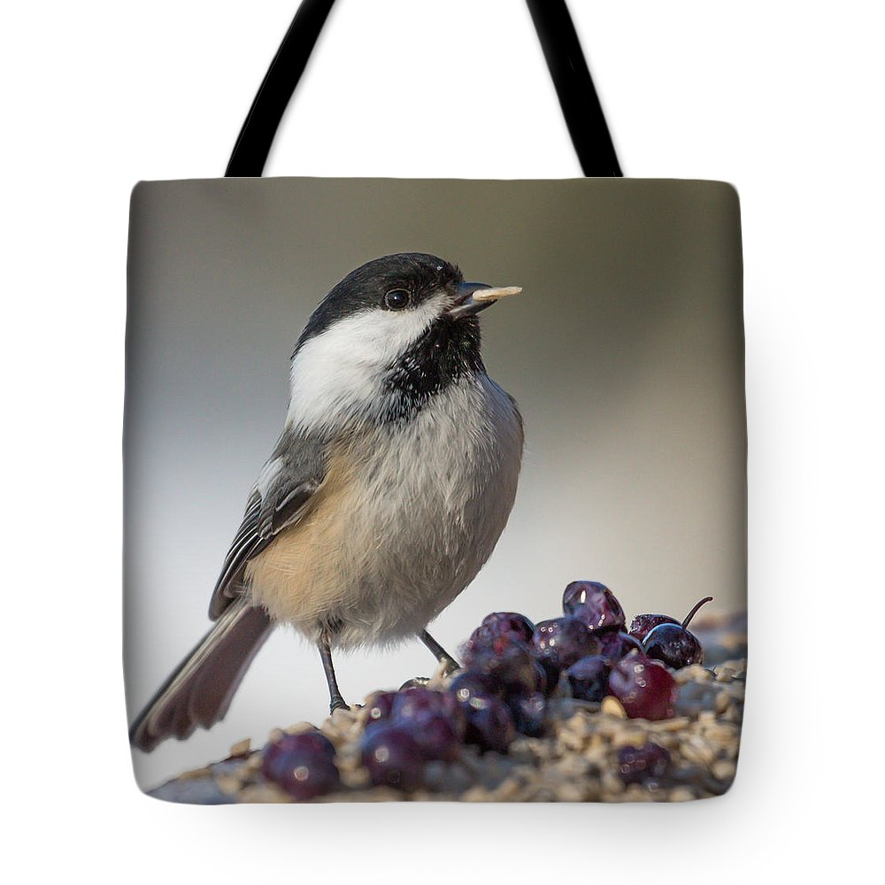 Chickadee Tote Bag featuring the photograph Black Capped Chickadee by Dee Carpenter