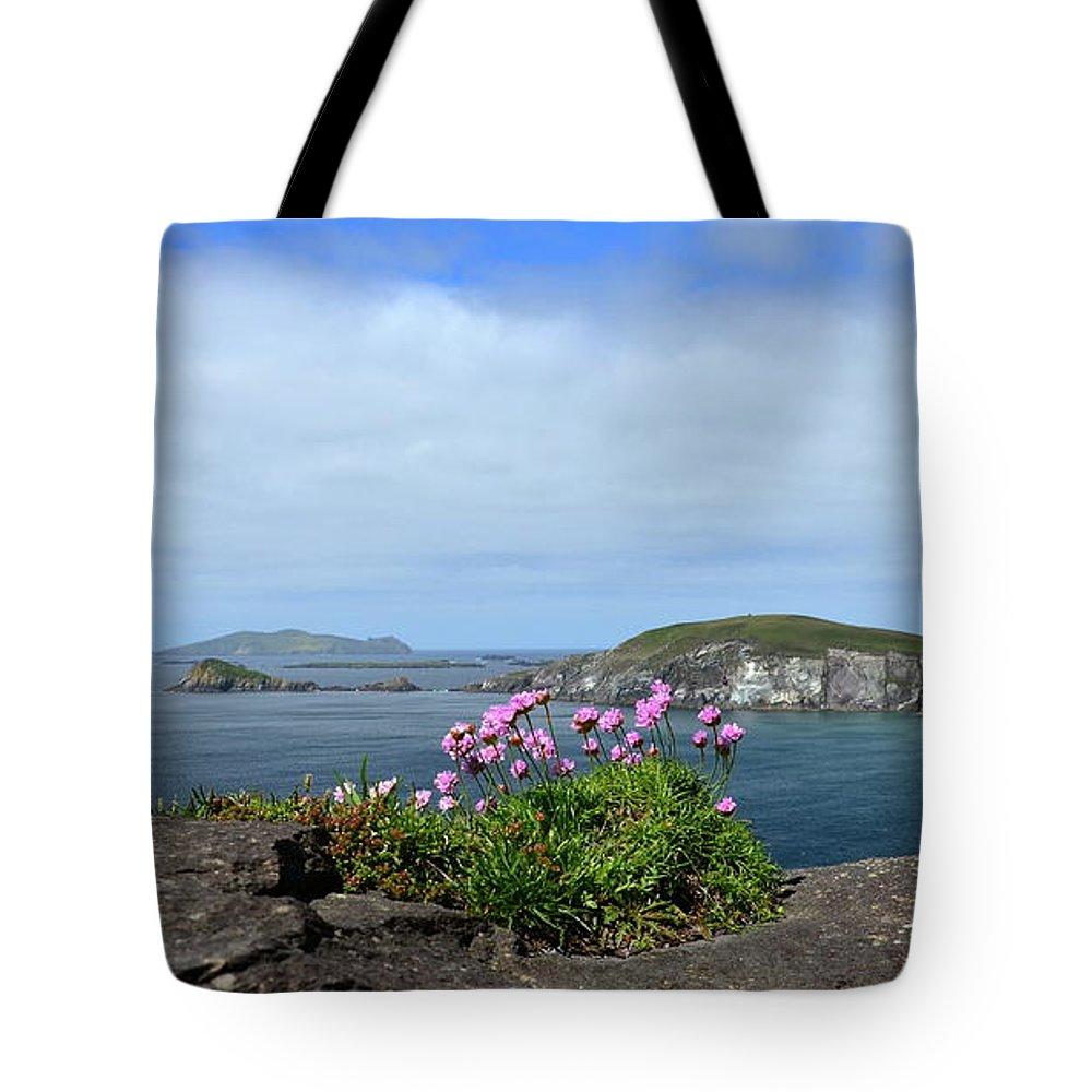 Blasket Islands Tote Bag featuring the photograph Blasket Islands by Barbara Walsh