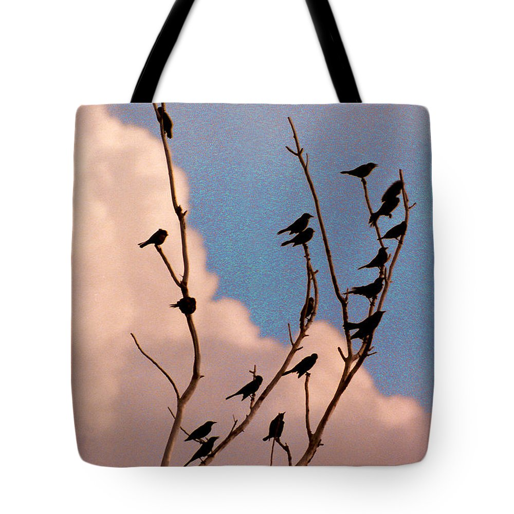 Birds Tote Bag featuring the photograph 19 Blackbirds by Steve Karol