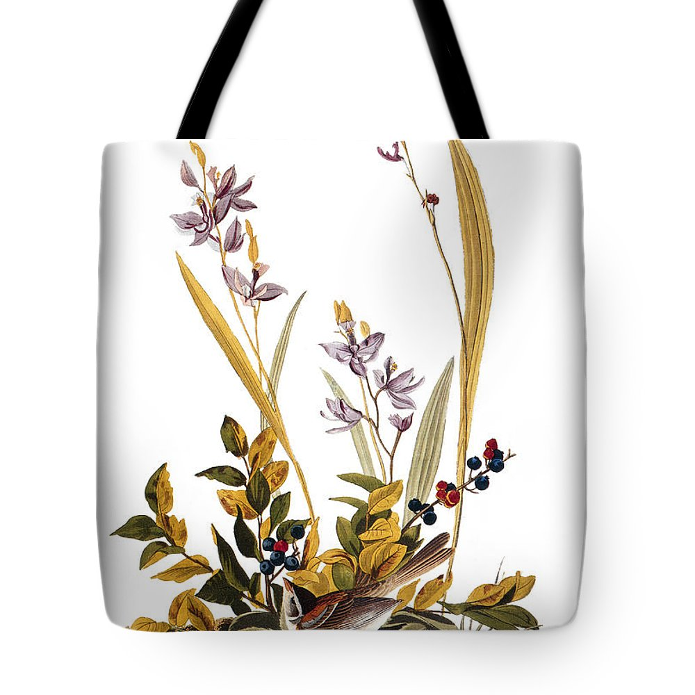 1827 Tote Bag featuring the photograph Audubon: Sparrow, 1827-38 by Granger