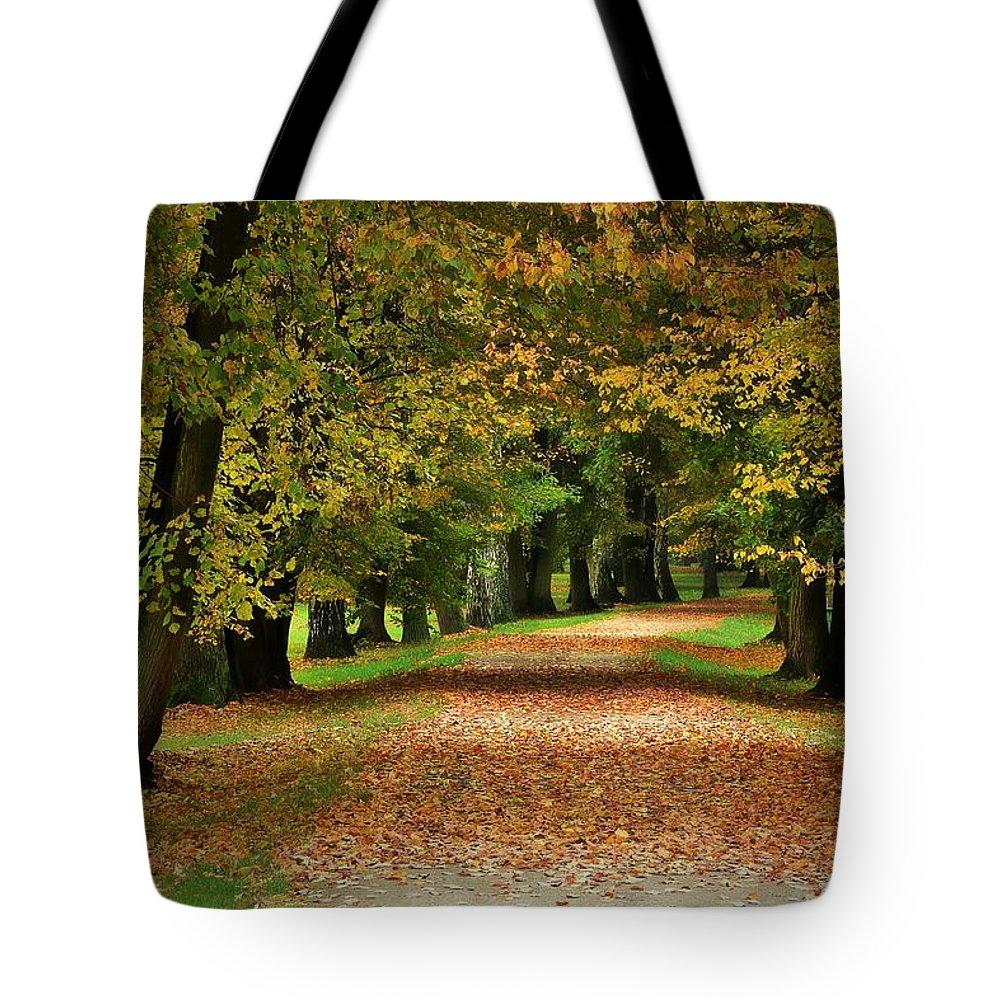 Autumn Tote Bag featuring the photograph Autumn Park by Dawn Van Doorn