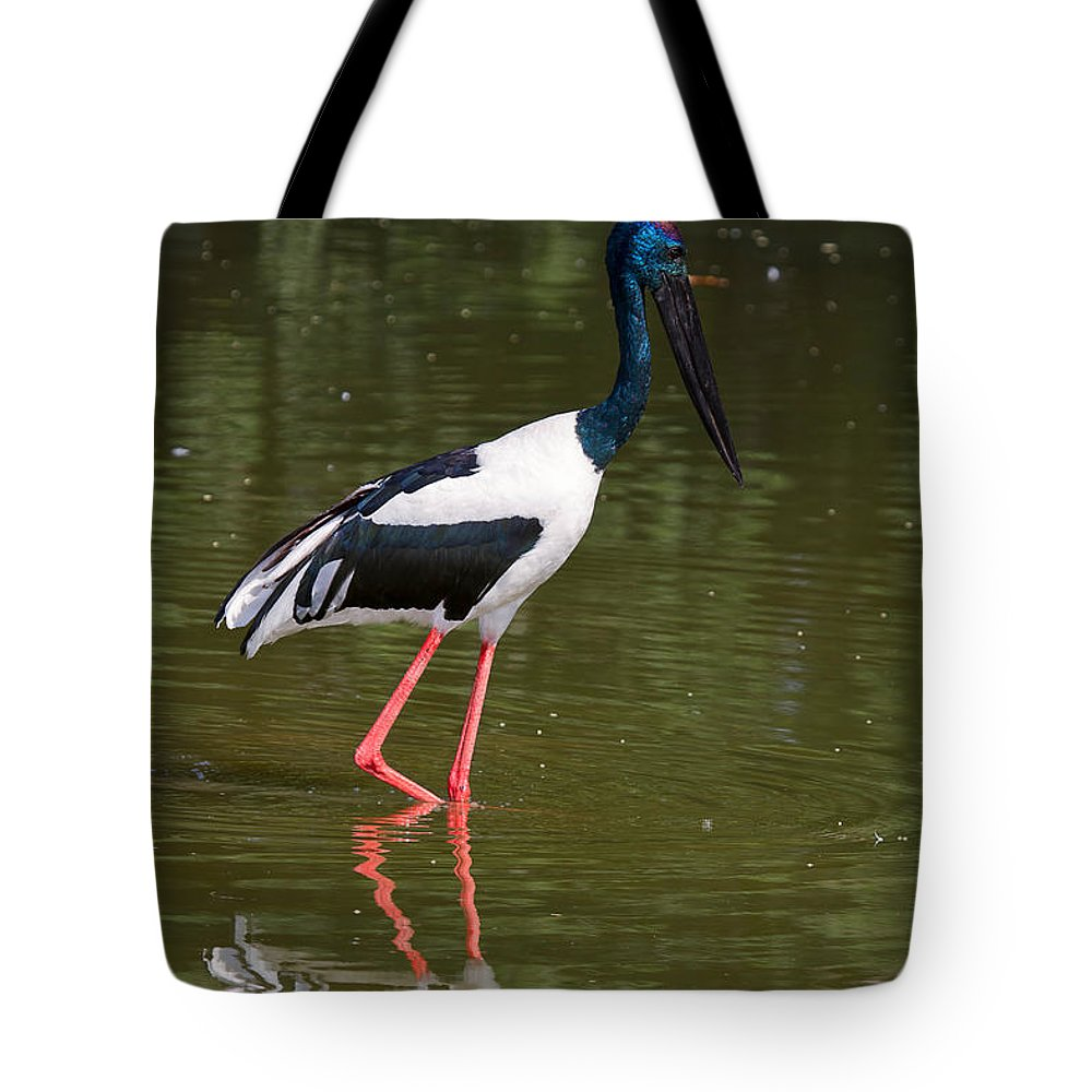 Bird Tote Bag featuring the photograph Black-necked Stork by Louise Heusinkveld