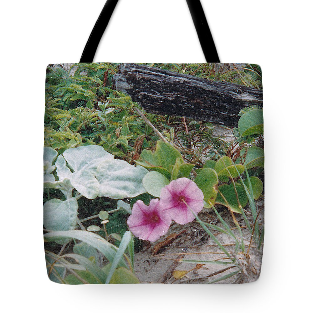 Morning Glory Flowers Beach Plants Sand Tote Bag featuring the photograph 2 Blooms by Cindy New