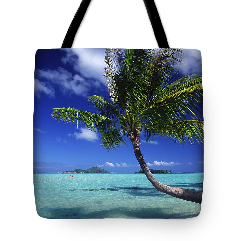 Beach Tote Bag featuring the photograph Bora Bora, Palm Tree by Ron Dahlquist - Printscapes