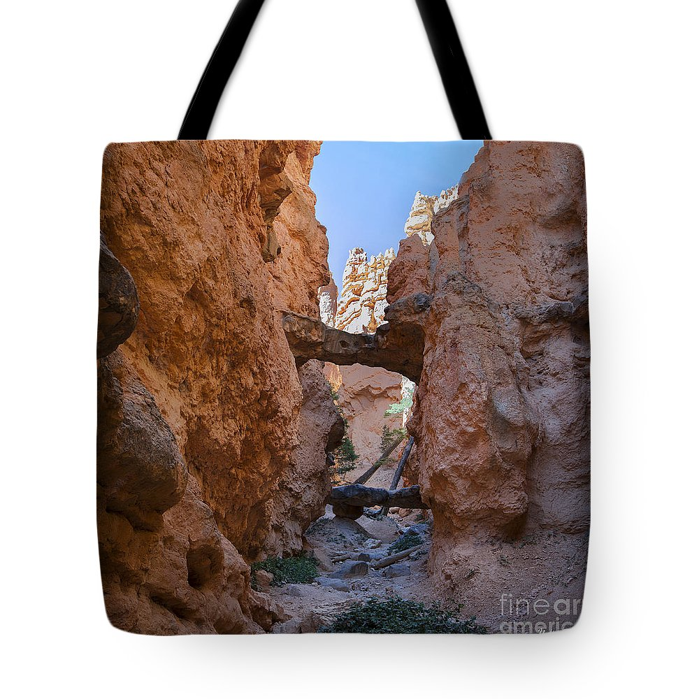 Navajo Trail Natural Bridge Tote Bag featuring the photograph Navajo Trail Natural Bridge by Yefim Bam