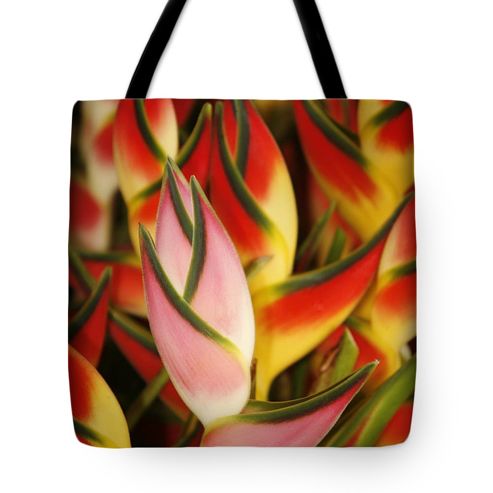 Beautiful Tote Bag featuring the photograph Bunch Of Heliconia by Ron Dahlquist - Printscapes