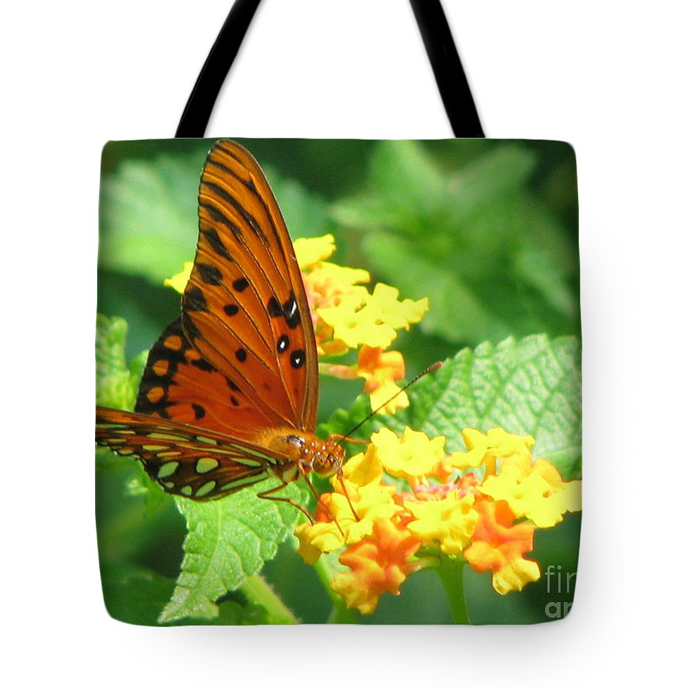 Butterfly Tote Bag featuring the photograph Butterfly by Amanda Barcon