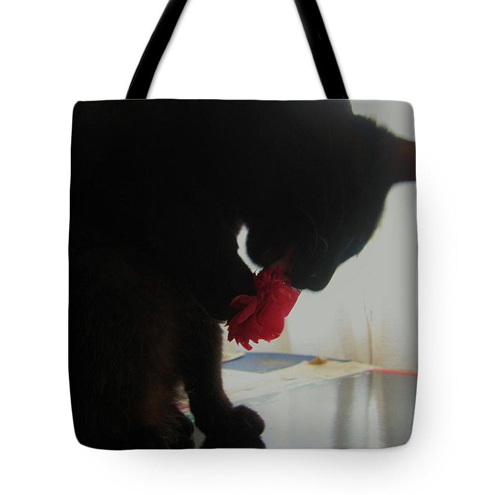 Photograph Cat Black Red Flower Camellia Tote Bag featuring the photograph Cat Eating Camellia by Seon-Jeong Kim