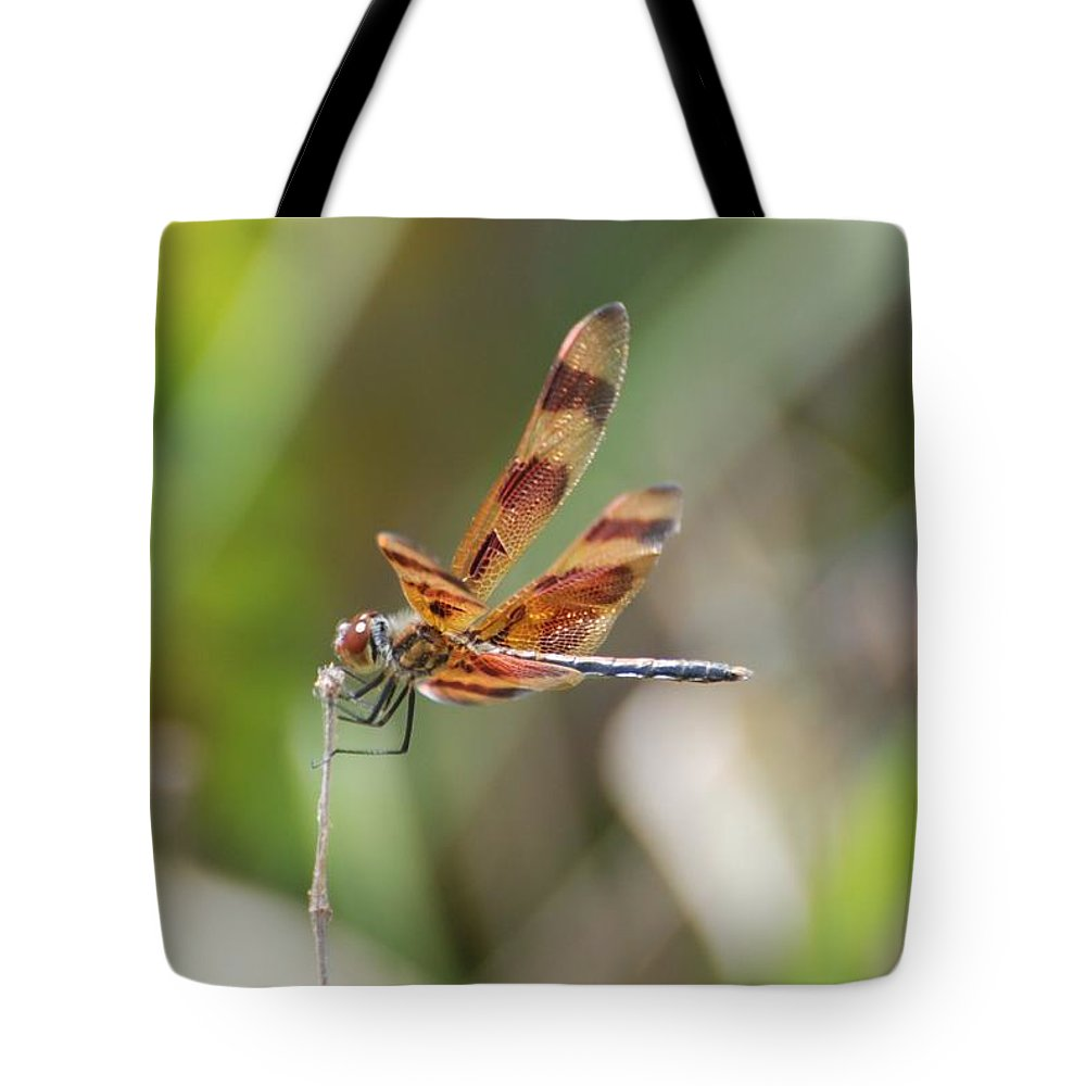 Nature Tote Bag featuring the photograph Dragon Fly by Rob Hans