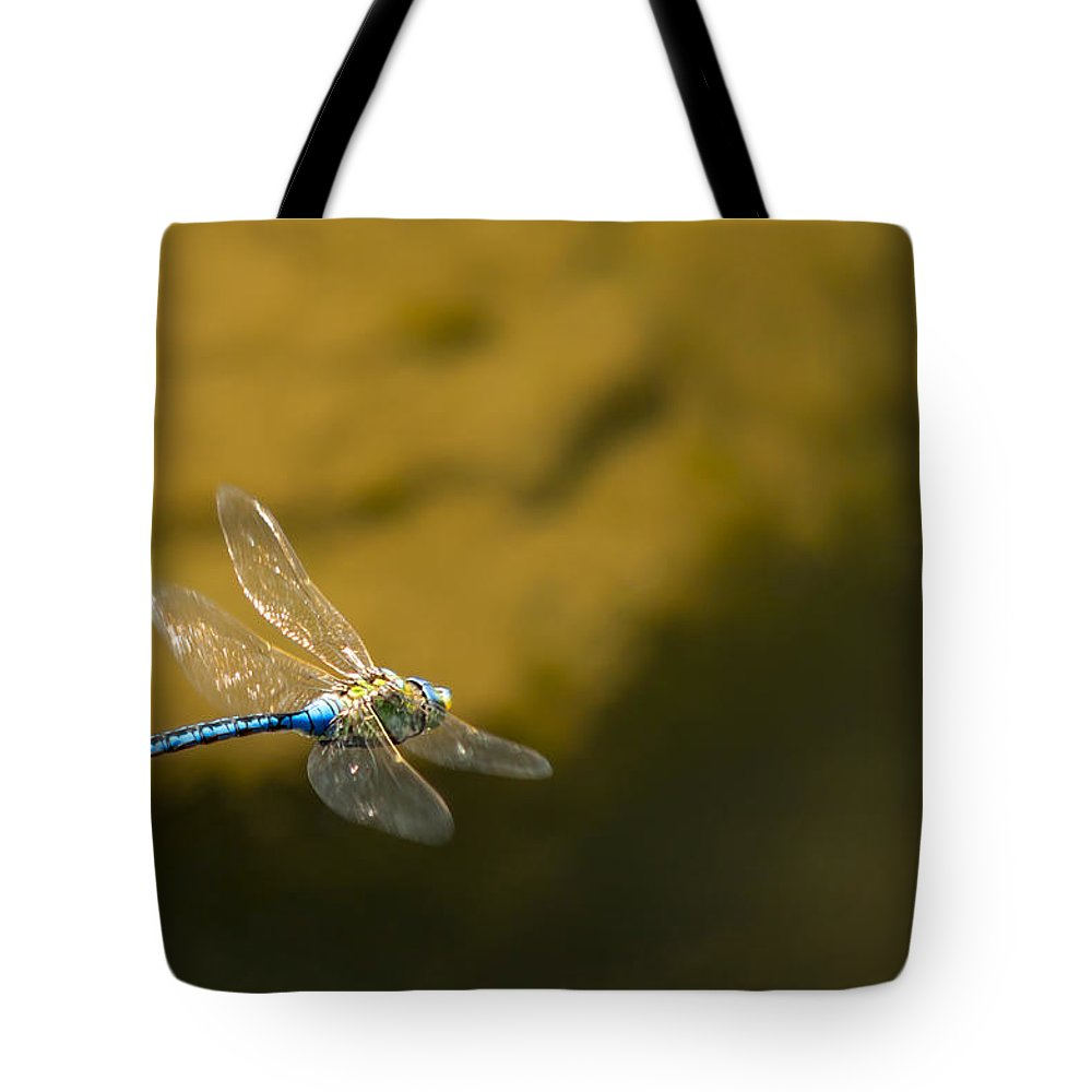 Animal Tote Bag featuring the photograph Dragonfly by Paulo Goncalves