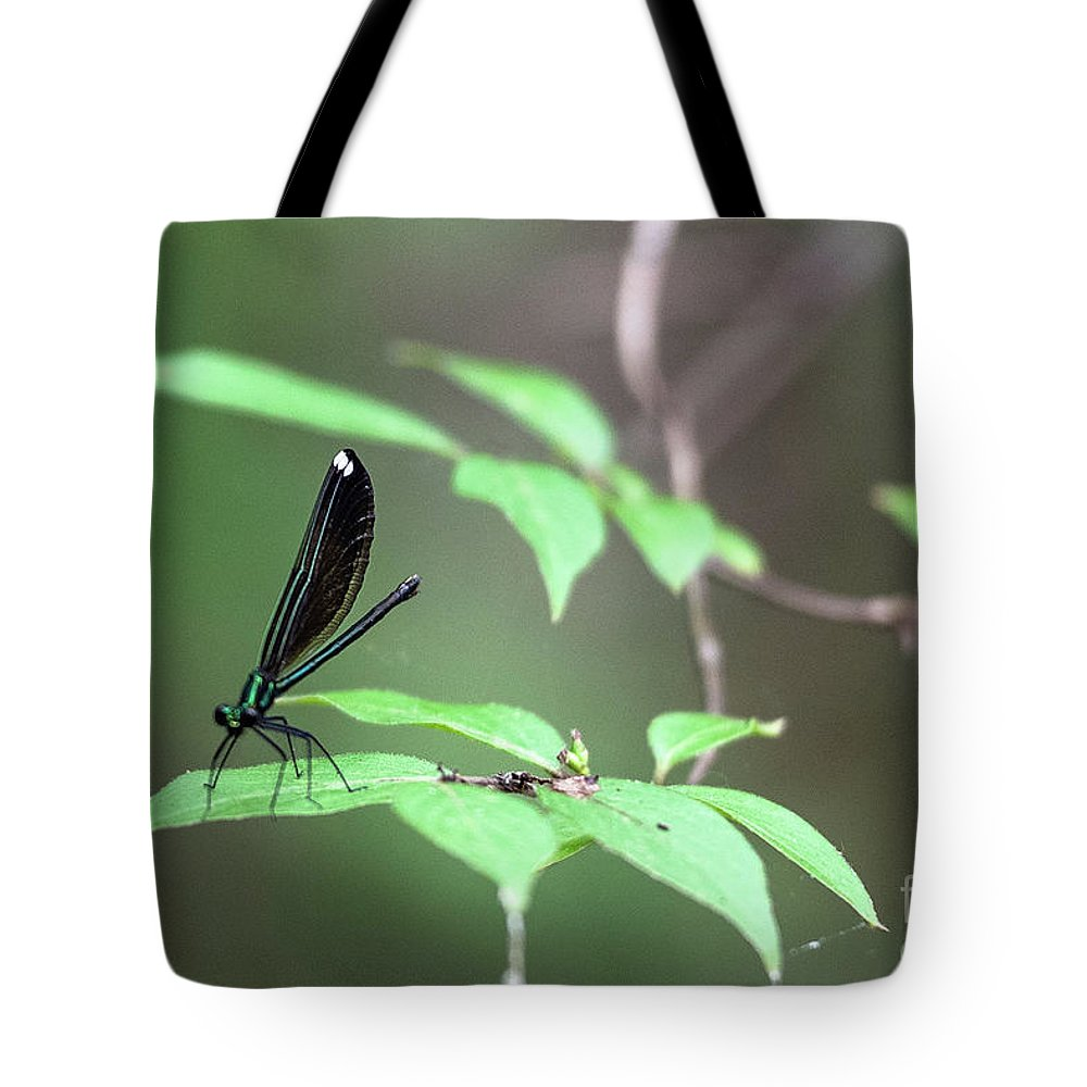 Dragonfly Tote Bag featuring the photograph Dragonfly by Wesley Farnsworth