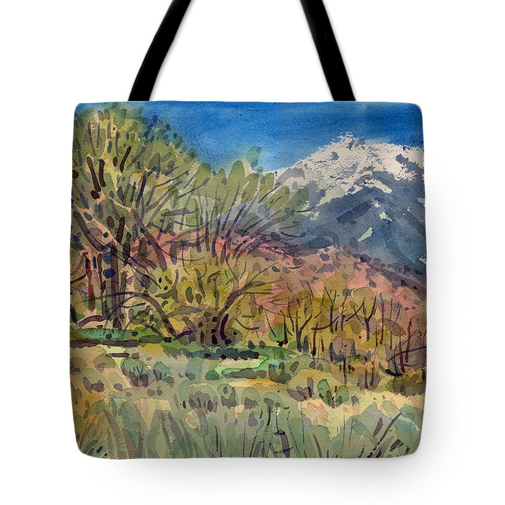 Western Landscape Tote Bag featuring the painting East of the Sierra Nevadas by Donald Maier