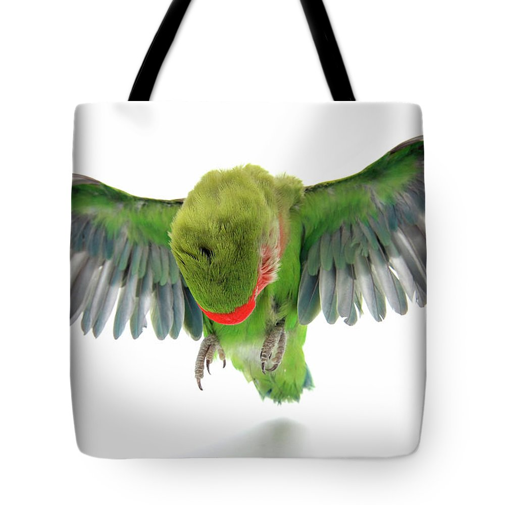 Fly Tote Bag featuring the photograph Flying Parrot by Yedidya yos mizrachi