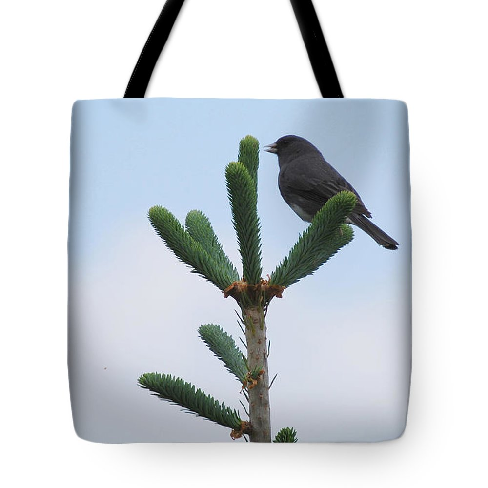 Bird Tote Bag featuring the photograph Free by Patricia Motley