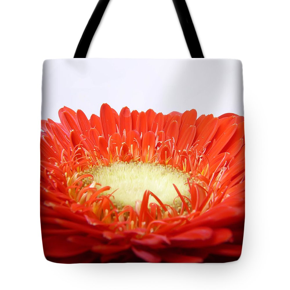 Gerbera Tote Bag featuring the photograph Gerbera by Daniel Csoka