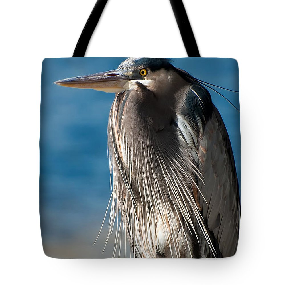 Bird Tote Bag featuring the photograph Great Blue Heron by Rich Leighton