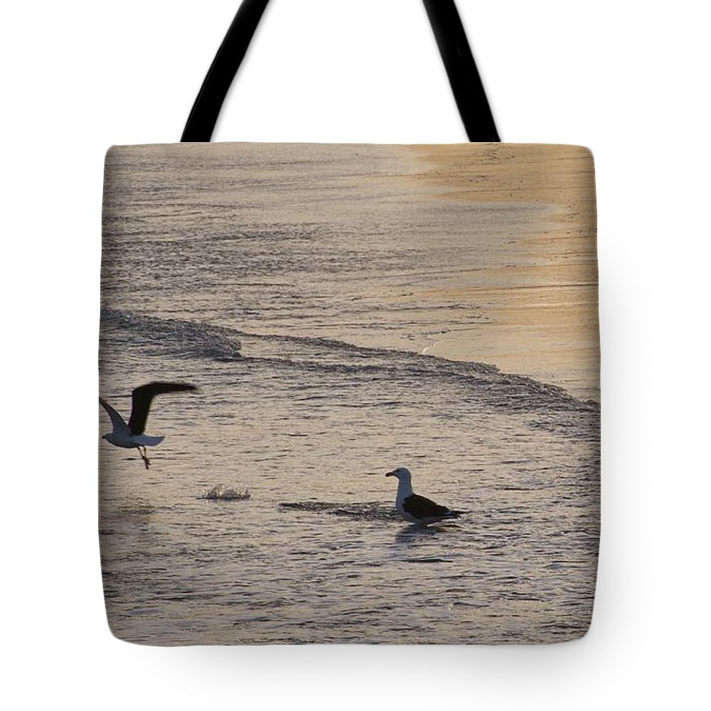 Seascape Of Two Gulls At Gloucester Tote Bag featuring the photograph Gulls At Gloucester by John Taylor