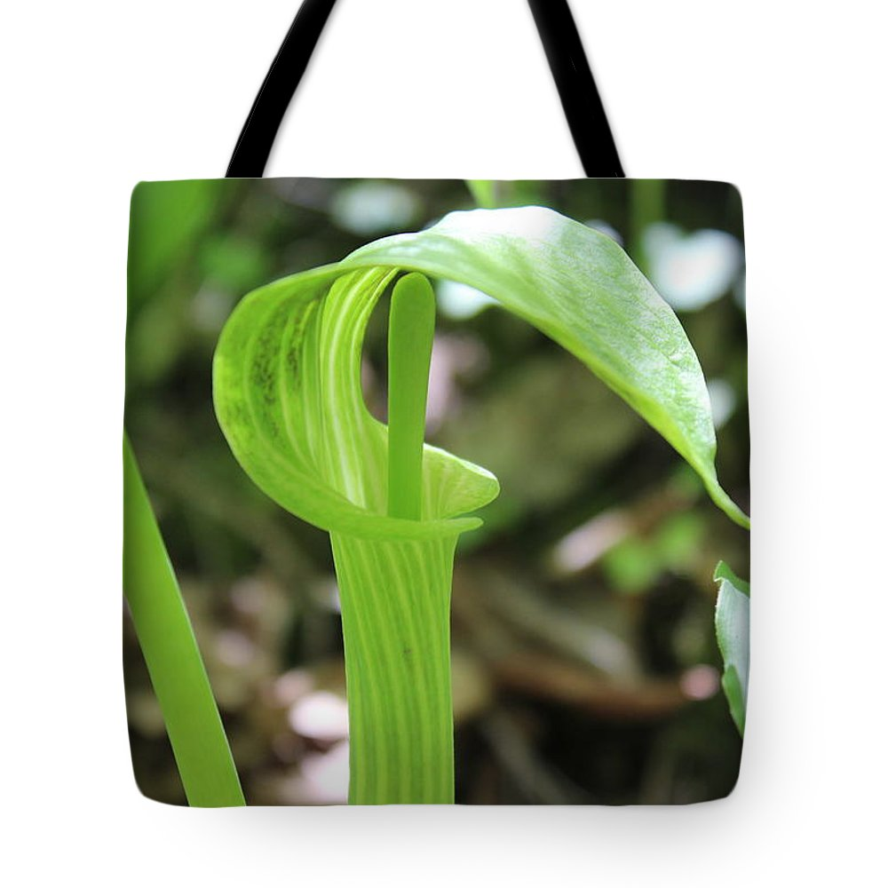 Flowers Tote Bag featuring the photograph Jack-in-the-pulpit by Cliff Ball