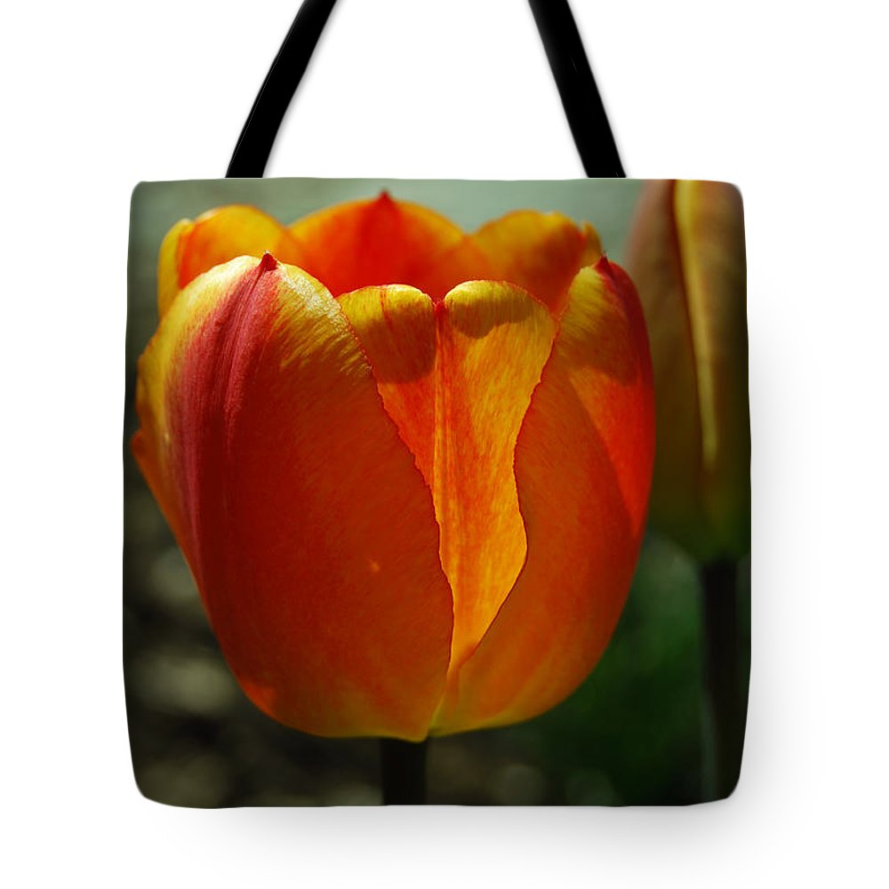 Tulips Tote Bag featuring the photograph 2 Lips by Trish Hale