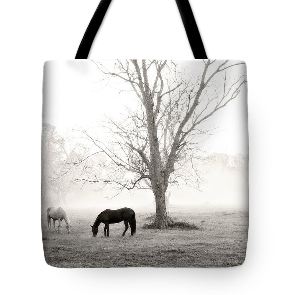 Magical Morning Tote Bag featuring the photograph Magical Morning by Scott Pellegrin