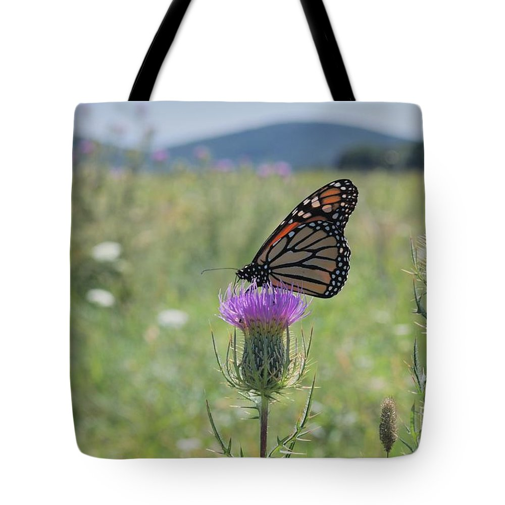 Monarch Tote Bag featuring the photograph Mountain Meadow Monarch by Randy Bodkins