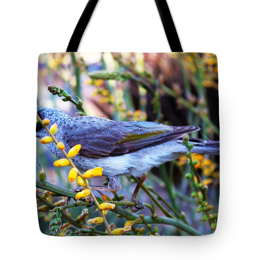 Mt. Cooth-tha Tote Bag featuring the photograph Noisy Miner In Oz by Susan Vineyard