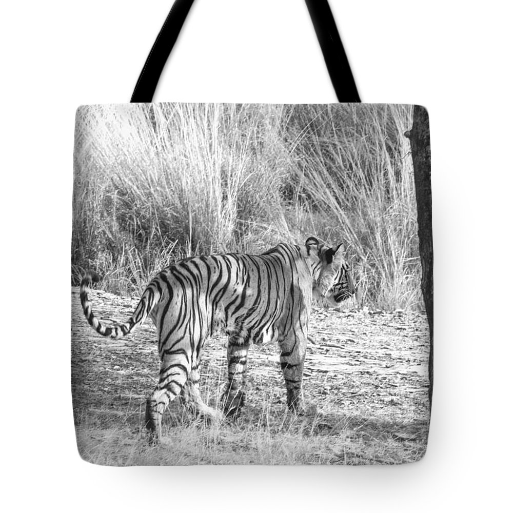 Tiger Tote Bag featuring the photograph On The Move by Pravine Chester