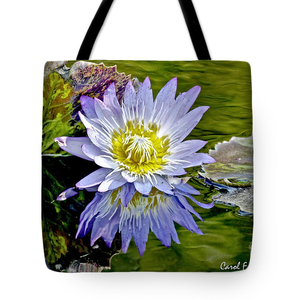 Impressionistic Tote Bag featuring the photograph Purple Water Lily Pond Flower Wall Decor by Carol F Austin